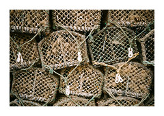 FILM - Lobster pots (fishyfish_arcade) Tags: 35mm analogphotography filmphotography filmisnotdead fujifilm istillshootfilm pentaxespio140m scarborough seaside superia100 analogcamera compact film lobsterpots
