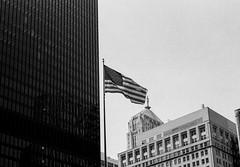 LeicaCLTriXCanonLTM5018July2019-21 (chicago8c) Tags: leicacl analog blackandwhite canon50mm18ltm canonltm50mm18 chicago classiclens film filmphotography kodak kodaktrix leica leicathreadmount ltm street streetphotography trix