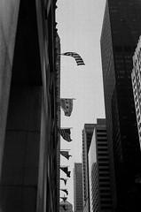 LeicaCLBerlin400CanonLTM5018July2019Exports-8 (chicago8c) Tags: leicacl trix400 analog canon50mm18ltm canonltm50mm18 chicago city classiclens film filmphotography illinois kodak kodaktrix leica leicathreadmount lomographyberlin400 ltm street streetphotography trix urban
