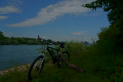 Biketour (Lutz Blohm) Tags: biketour fahrradtour rhein rheinufer naturfoto sonyfe24105mmf4goss sonyalpha7aiii scottgenius40 fluskilometer418