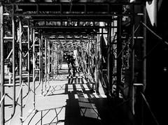 LeicaCLTriXCanonLTM5018July2019-4 (chicago8c) Tags: leicacl analog blackandwhite canon50mm18ltm canonltm50mm18 chicago classiclens film filmphotography kodak kodaktrix leica leicathreadmount ltm street streetphotography trix