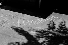 LeicaCLBerlin400CanonLTM5018July2019Exports-13 (chicago8c) Tags: leicacl trix400 analog canon50mm18ltm canonltm50mm18 chicago city classiclens film filmphotography illinois kodak kodaktrix leica leicathreadmount lomographyberlin400 ltm street streetphotography trix urban