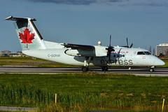 C-GONW (Air Canada express - JAZZ) (Steelhead 2010) Tags: aircanada aircanadaexpress jazz dehavillandcanada dhc8 dhc8100 yyz creg cgonw
