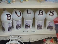Bulbs Ely July 2019 (Uncle Money UK) Tags: bulbs ely july 2019
