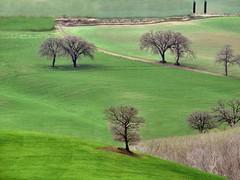 Val d'Orcia (Jolivillage) Tags: jolivillage valdorcia paysage landscape paesaggio toscane tuscany toscana italie italy italia