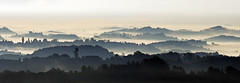 Silhouettes (Dr. Ernst Strasser) Tags: ifttt 500px panorama fog austria slovenia styria morning south styrian wine road ernst strasser unternehmen startups entrepreneurs unternehmertum strategie investment shareholding mergers acquisitions transaktionen fusionen unternehmenskäufe fremdfinanzierte übernahmen outsourcing unternehmenskooperationen unternehmensberater corporate finance strategic management betriebsübergabe betriebsnachfolge southstyrianwineroad
