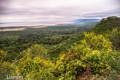 Ngorongoro, crater and wild-life Park, Tanzania (Liamfm .) Tags: ngorongoro crater wildlifepark tanzania
