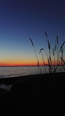 Sunset at childhood paradise. (A.Koponen) Tags: nature sunsetphotography sunsetsunrise huaweiplkl01 huawei phonephotography finnisharchipelago finnishphotography moody straws summer sunsetsniper