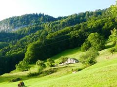 Vom Brienzersee auf die Axalp (Martinus VI) Tags: bern berne berna berner bernese oberland kanton de canton schweiz suisse suiza switzerland svizzera swiss y190625martinus6 martinus6xy martinus vi hillside