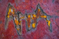 AiA (L@nce (ランス)) Tags: macro initials letters bark arbutus tree fishermanswharf victoria canada jamesbay nikkor micro nikon