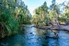 20170527-065-Gregory Downs Camp_Photobook-Flickr.jpg (Brian Dean) Tags: nq 2017tour 2017bookpicked facebook gregorydownscamp caravaning slideshow river