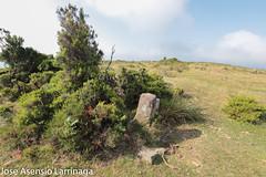 Parque Natural de Gorbeia 2019 #DePaseoConLarri #Flickr-17 (Jose Asensio Larrinaga (Larri) Larri1276) Tags: parquenaturaldegorbeiagorbea naturaleza airelibre euskalherria basquecountry