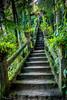 20170514-016-d75 Paronella - FBook-Flickr.jpg (Brian Dean) Tags: paronella nq mena 2017bookpicked ruins caravaning caravan 2017tour rainforest creek facebook night flickr slideshow