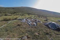 Parque Natural de Gorbeia 2019 #DePaseoConLarri #Flickr-7 (Jose Asensio Larrinaga (Larri) Larri1276) Tags: parquenaturaldegorbeiagorbea naturaleza airelibre euskalherria basquecountry