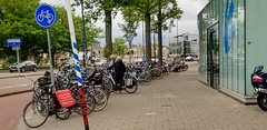 5R8A1514A (My Town Photography) Tags: haarlem northholland netherlands