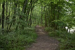 Indian Hollow Trail (Myusername432) Tags: trail park ohio reservation walk hiking trees woods river nature