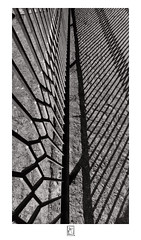 Shadows of gate bars (krishartsphotography) Tags: krishnansrinivasan krishnan srinivasan krish arts photography fineart fine art monochrome blackandwhite gate shadow bars iron old fence pattern affinity photo silver efex pro dxo fuji xpro2 opteka 12mm f28 mukkombu dam trichy tamilnadu india