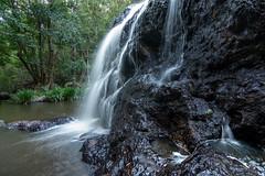 Gheerulla Falls (Nature's Image Photography) Tags: gheerullafalls waterfall rainforest mapleton nature
