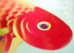 Poisson rouge et jaune (Christian Chene Tahiti) Tags: samsung s7e téléphone mobile poisson poissonrouge fish redfish jaune rouge imaginaire virtuel macro œil eye macromondays gonefishing blanc bleu red yellow couleur leurre