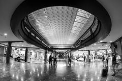 Union Station Washington DC (jtgfoto) Tags: unionstation washingtondc washington fisheyelens rokinon architecture architecturalphotography wideangle wideanglephotography travel trainstation sonyimages sonyalpha blackandwhite bnw monochrome bw shopping shoppers rokinon8mm