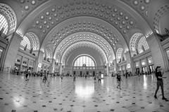 Union Station Washington DC (jtgfoto) Tags: unionstation washingtondc washington fisheyelens rokinon architecture architecturalphotography wideangle wideanglephotography travel trainstation sonyimages sonyalpha blackandwhite bnw monochrome bw rokinon8mm