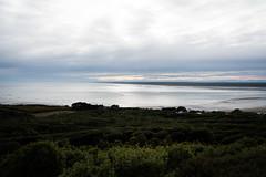 20190710-005840.jpg (_pjmonline) Tags: sonyilce7rm3 newzealand ilce7rm3 2019 sony travelphotography invercargill southlandregion