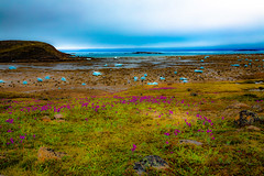IQALUIT 2019 (Imagin.air) Tags: summer iqaluit north sea land