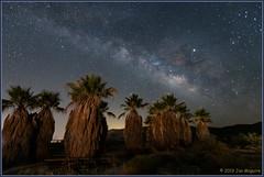 Anza-Borrego at Night 3982 (maguire33@verizon.net) Tags: anzaborregodesertstatepark california lll milkyway galaxy lightpollution lowlevellighting stars