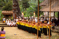 CO17 (D Rathjens) Tags: bali balinese ceremonies offerings