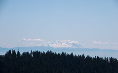 Mt. Baker from Mt. Seymour - North Vancouver, Canada (The Web Ninja) Tags: photo photography explore color colour vancouver northvan northvancouver vancity mtseymour mount seymour mountain lookout view mtbaker baker mountbaker nature landscape