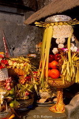 CO18 (D Rathjens) Tags: bali balinese ceremonies offerings