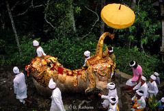 CO09 (D Rathjens) Tags: bali balinese ceremonies offerings