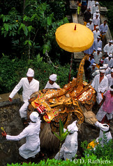 CO08 (D Rathjens) Tags: bali balinese ceremonies offerings
