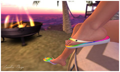 Flippy Floppies (frankiepaig3) Tags: second life flip flop sandals thongs rainbow feet