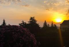 Que espléndida mañana (eitb.eus) Tags: eitbcom 16599 g1 tiemponaturaleza tiempon2019 amanecer nafarroa ayegui josemariavega