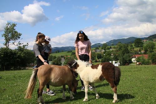 Die Mädels auf der Ponykoppel