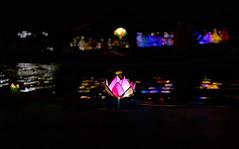 Vietnam_2019_052 (ShinIlgR) Tags: vietnam vivien ebran sony a7r street rue ambiance night nuit day jour atmosphere color couleur nature city ville neon lumiere light