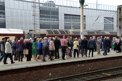 Crowds at Preston Railway Station waiting for the historic Flying Scotsman steam engine (Tony Worrall) Tags: city uk england stream nw tour open place northwest country north visit location lancashire area preston update attraction lancs welovethenorth greatbritain people english station outside outdoors photo shoot shot britain sale candid crowd stock captured platform picture railway trains steam gb buy wait british inside capture sell caught item gather flyingscotsman prestonrailwaystation instragram ilobsterit photosofpreston