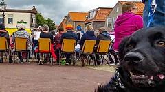 Dog and Music (CloudBuster) Tags: music concert brandaris blazers stabyhoun hond dog friese stabij muzikanten orchestra orkest terschelling culture event lighthouse vuurtoren straat party