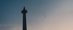 Monas in the morning (aplusn) Tags: monument morning birds canon