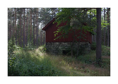 LW XXIX ([ Time - Beacon ]) Tags: tb building decay rural sweden old abandoned wood forest