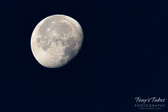 July 20, 2019 - The moon on the 50th anniversary of Apollo 11's landing. (Tony's Takes)