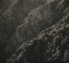 ribcape (jssteak) Tags: colorado canyon blackcanyon cliffs morning aged