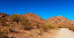 Phoenix Mountain Park (karma (Karen)) Tags: phoenix arizona phoenixmountainpark desert trails mountains cactus succulents crossprocess picmonkey hss topf25 cmwd