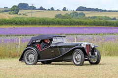 1937 MG TA (Roger Wasley) Tags: dru919 1937 mg ta cotswold lavender classic car vehicle oldtimer