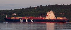 MSC Ela - IMO 9282259 (J. Trempe 3,990 K hits - Merci-Thanks) Tags: sillery quebec canada ship navire fleuve river stlaurent stlawrence conatiner conteneur msc ela