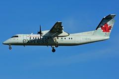 C-GEWQ (Air Canada express - JAZZ) (Steelhead 2010) Tags: aircanada aircanadaexpress jazz yyz creg dehavillandcanada dhc8 dhc8300 dash8