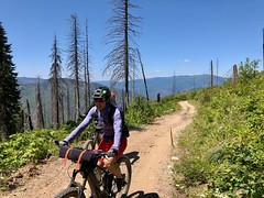 IMG_2757 (Doug Goodenough) Tags: bicycle bike cyle pedals spokes ebike bulls evo estream scott jen river selway idaho lookout mountain climb sun summer july 2019 gravel grinding drg531 drg53119 drg53119p drg53119pindianlookout forest canyon