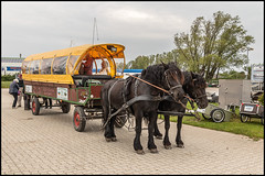 Hiddensee Horse Carriage (John R Chandler) Tags: achterndiek coveredwagon germany hiddenseeisland mecklenburgvorpommern mecklenburgwesternpomerania passagethroughpomeraniacruise rivercruise vitte inselhiddensee