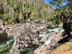 IMG_2742 (Doug Goodenough) Tags: bicycle bike cyle pedals spokes ebike bulls evo estream scott jen river selway idaho lookout mountain climb sun summer july 2019 gravel grinding drg531 drg53119 drg53119p drg53119pindianlookout forest canyon